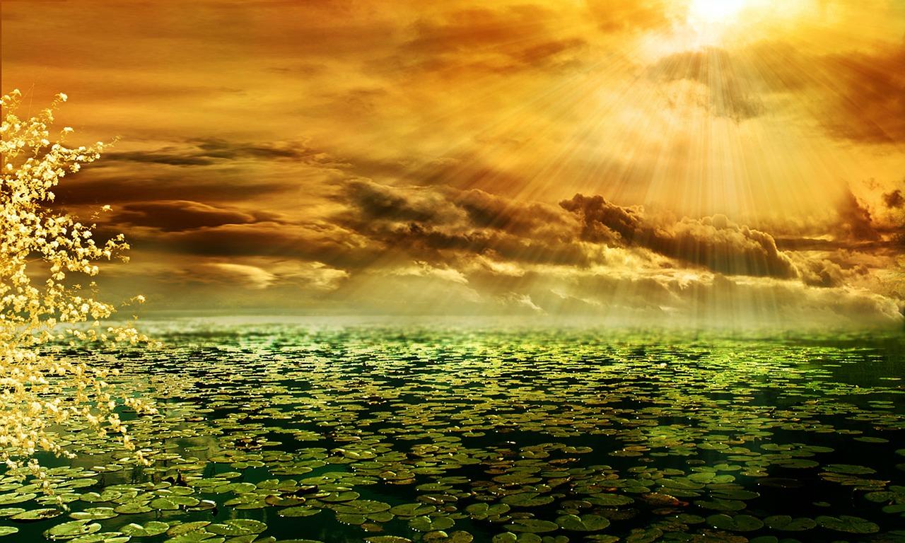 sunbeam over pond